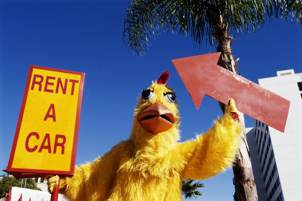 Rent a car chicken holding a sign
