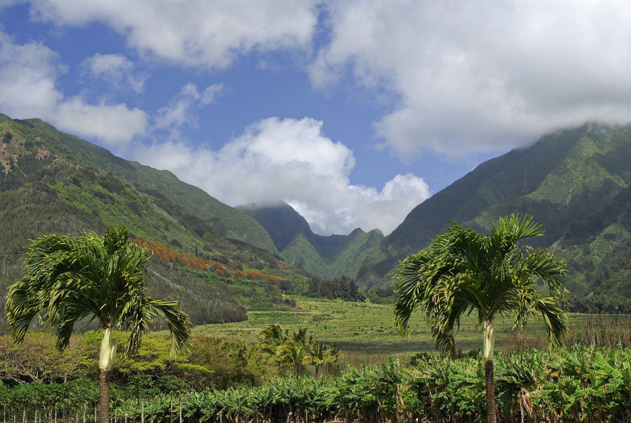 Fun Things to Do on Maui With Teenagers