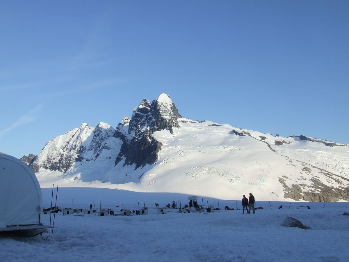 Summer camp for dog sledders on the Juneau Ice Fields