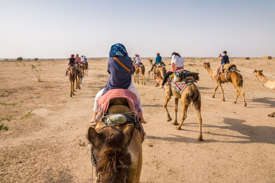 Camel Safaris in Jaisalmer and Bikaner: What to Know