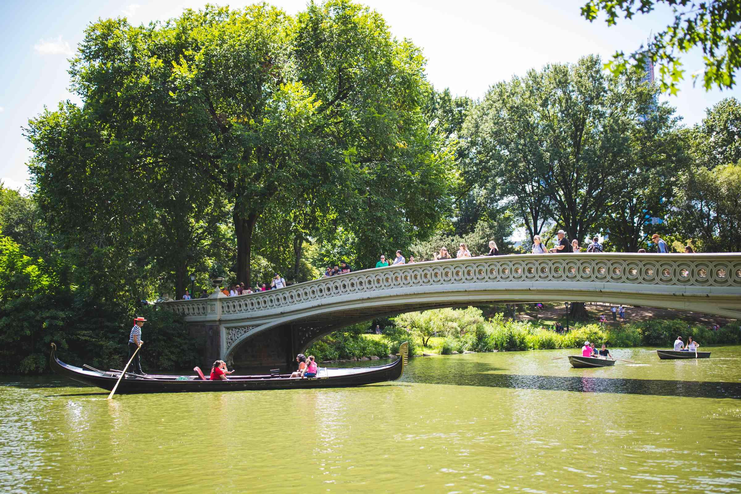 Central Park, NYC, NY
