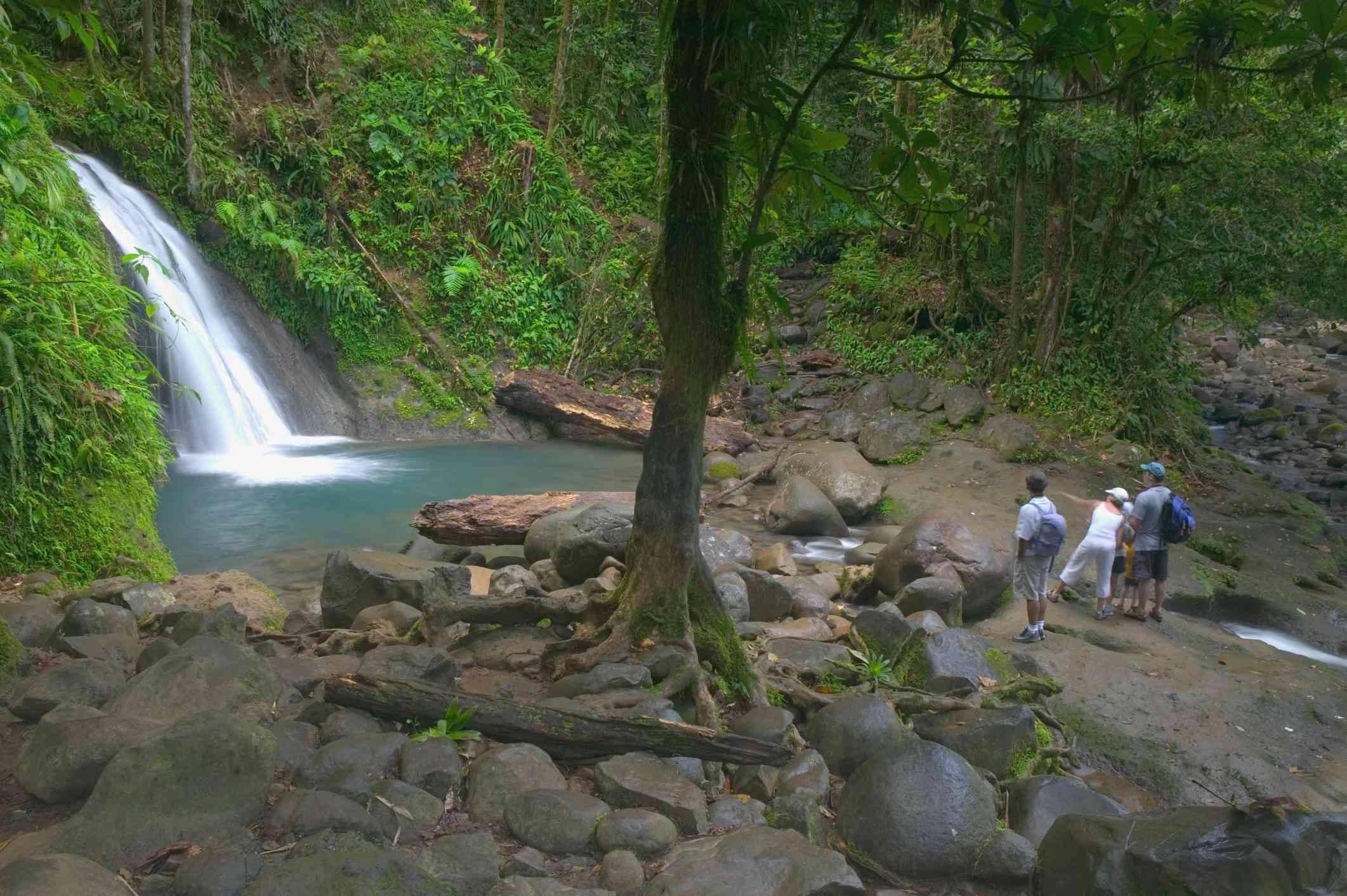 Visitors at Cascade aux Ecrevisses Waterfall, Parc Nationale de la Guadaloupe