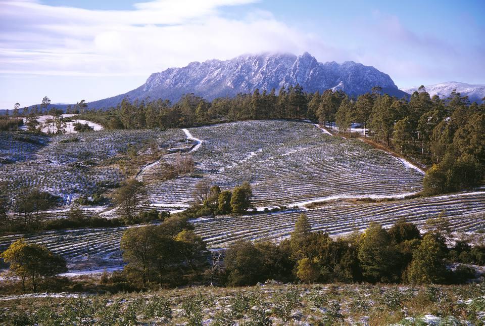 Farmland, Tasmania, Australia