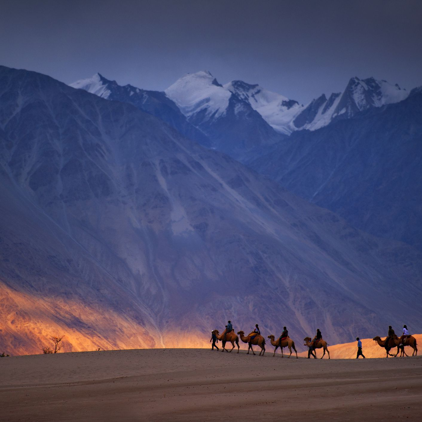 Ladakh's Nubra Valley: The Complete Guide