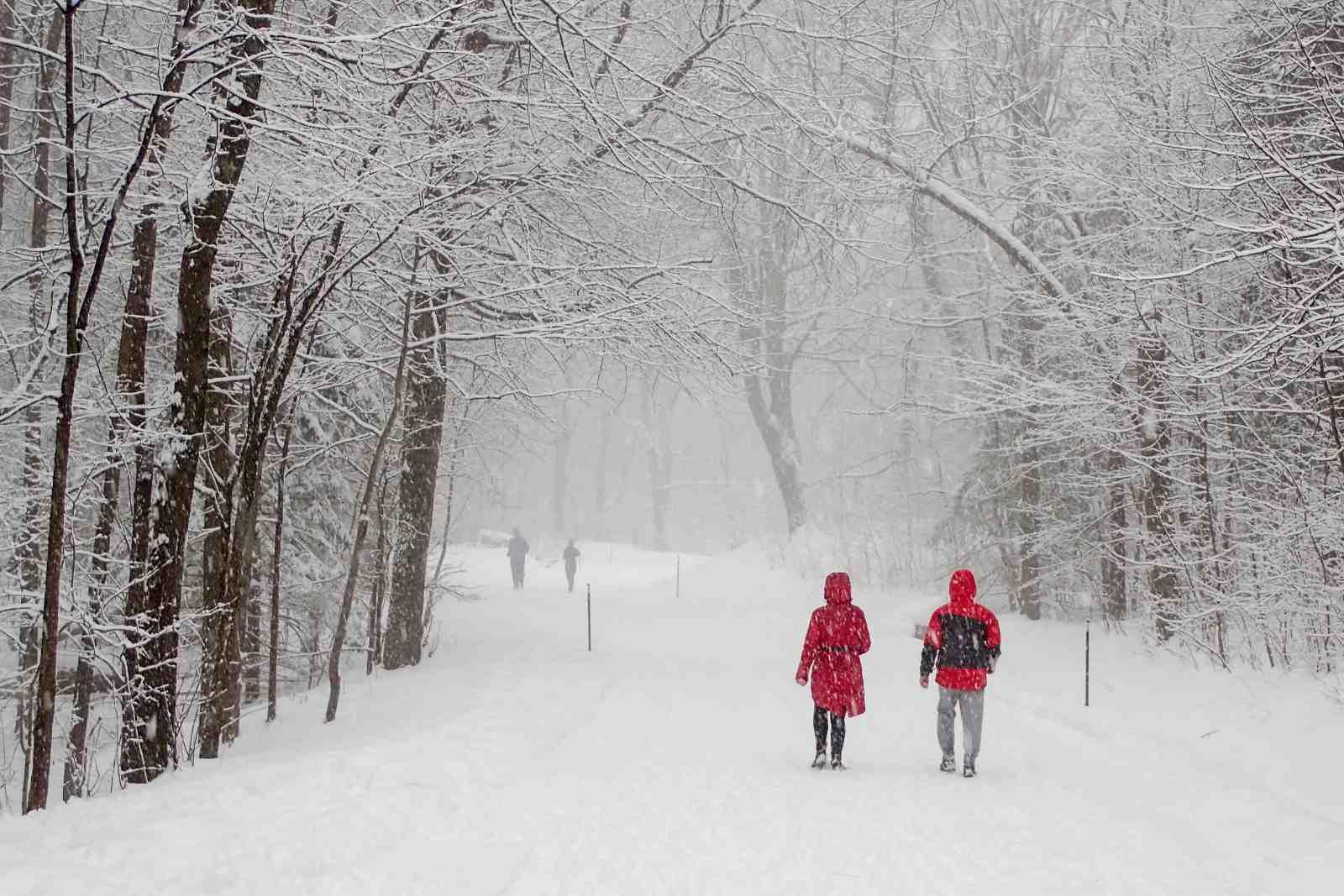 Las mejores caminatas de invierno cerca de Montreal incluyen Mount Royal Park
