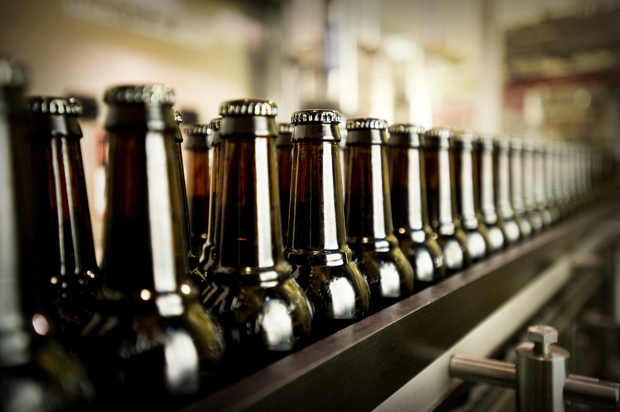 Beer bottles waiting to be labelled