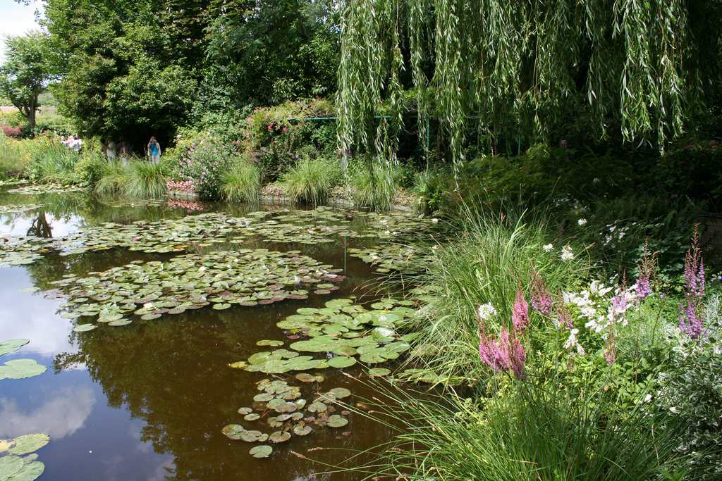 Waterlilies and willows at Monet's Gardens, Giverny.