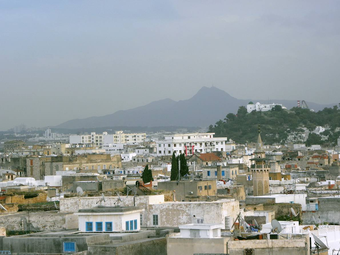 Tunis and the Atlas Mountains