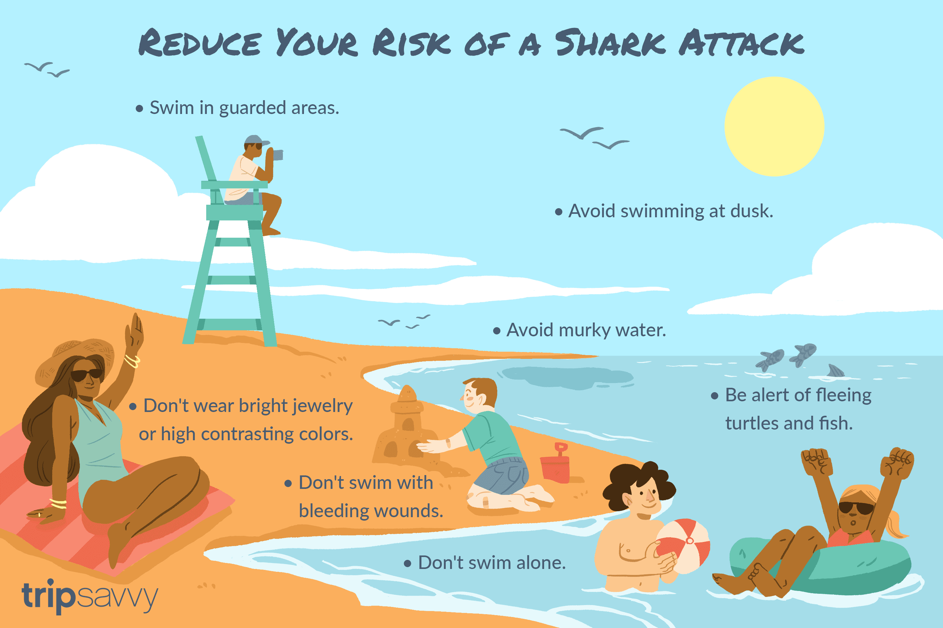 The Facts Behind Shark Attacks in Hawaii