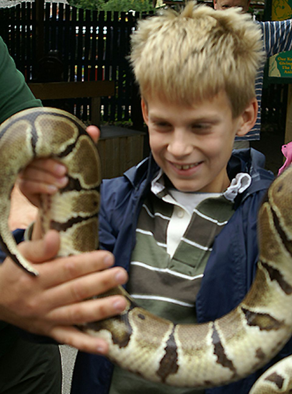 "When we came across the snake keeper in Longleat's ""Pet's Corner"" Nick was hesitant. But a few minutes later, he was enthusiastically hefting the heavy critter like a trophy!"