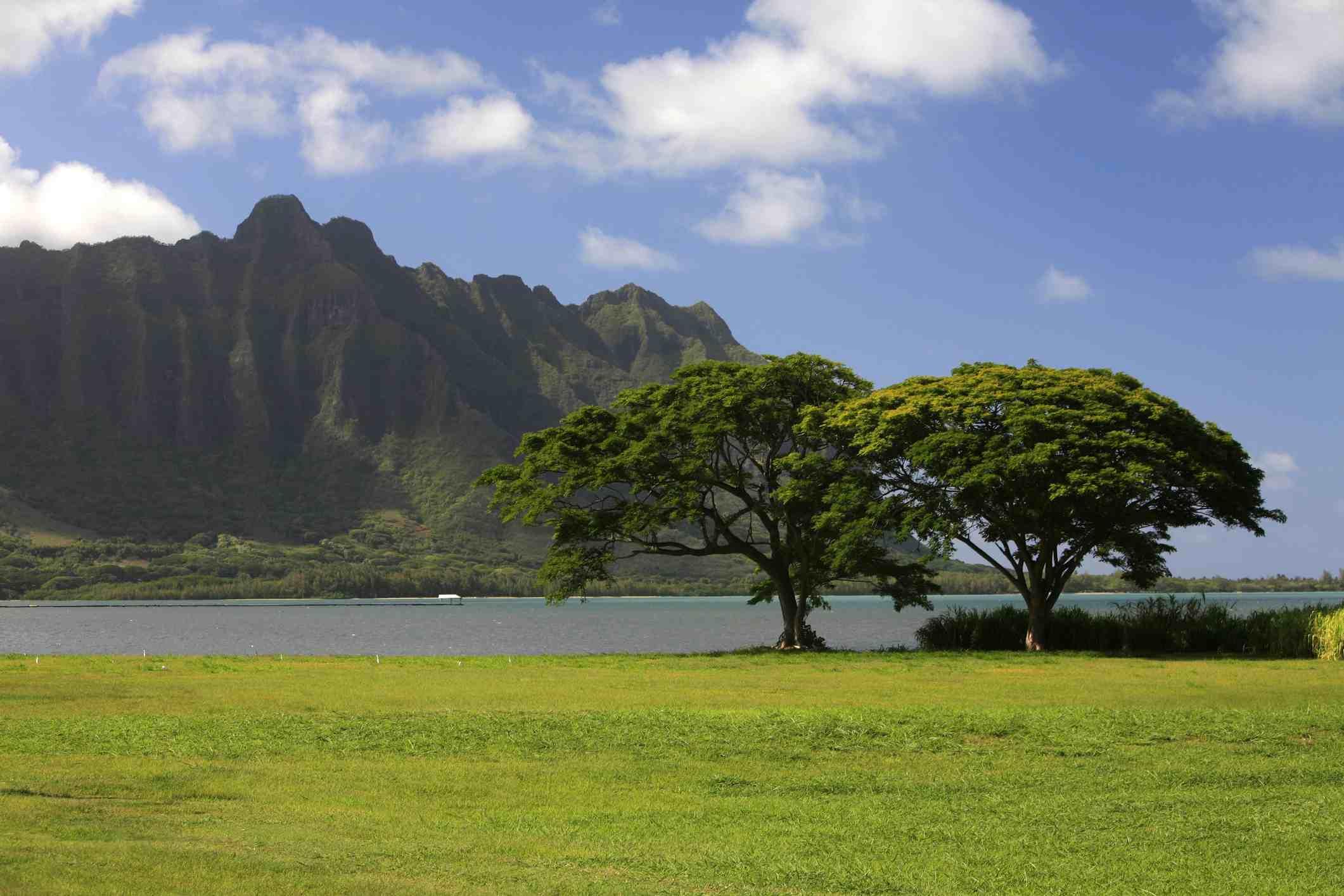 Kane'ohe Bay with the steep cliffs of Pali-ku on the east coast of O'ahu, known for Jurassic Park on Kualoa Ranch, Hawaii.