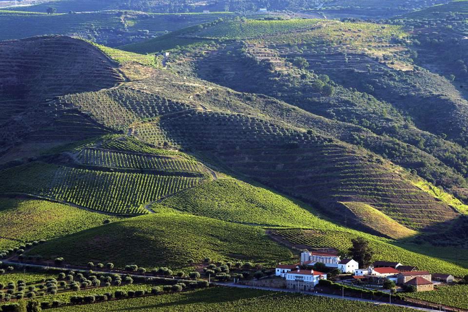 Valle de Foz Coa en Portugal