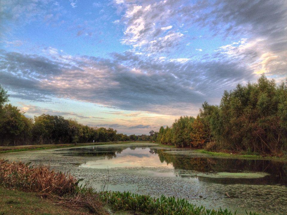 Parque Estatal Brazos Bend