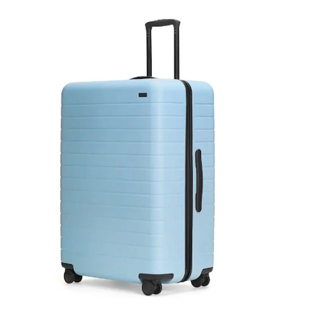 29bc3bdbcbf2 The 10 Best Checked Luggage Bags of 2019