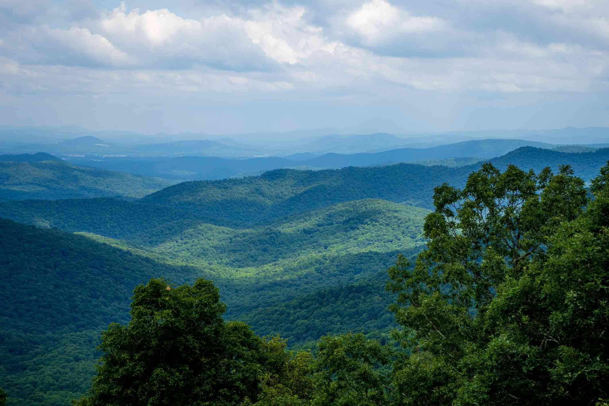 Mount Pisgah National Forest, NC