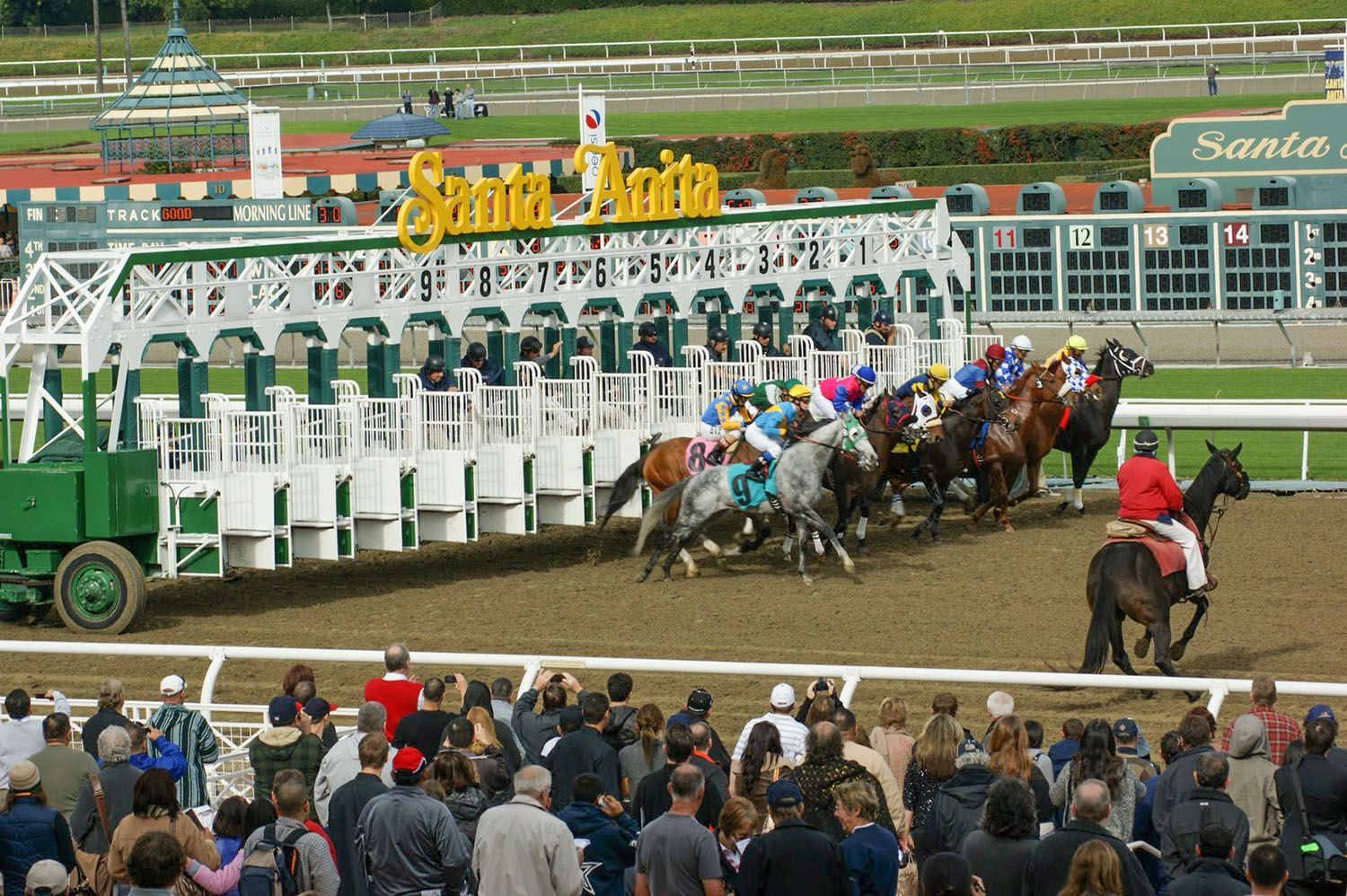 Santa Anita Race Track Visitor Guide Why You Should Go