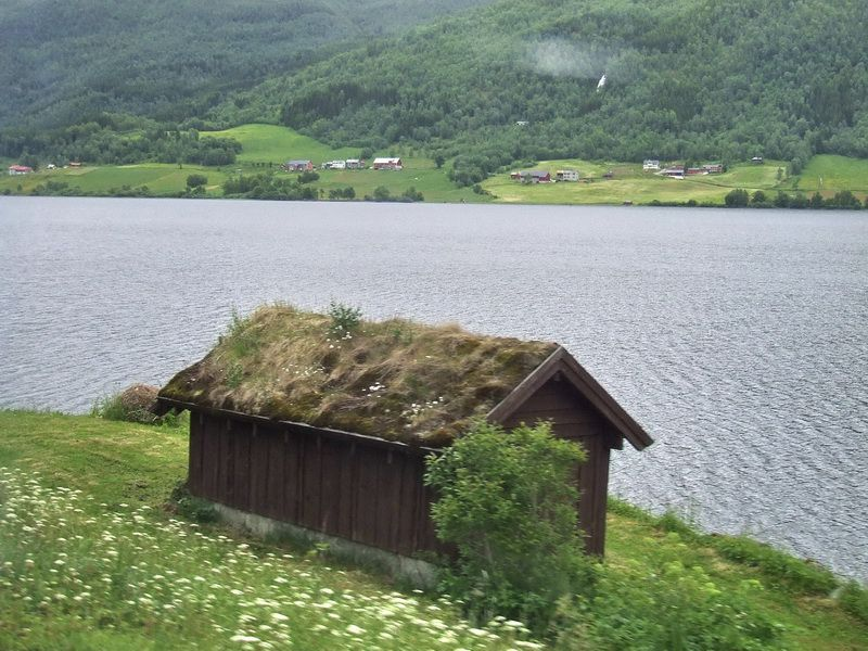 Sod Roof on Norwegian Hut
