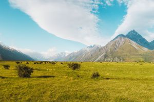View of mountains from the the Aoraki mountain range from a green grassy valley
