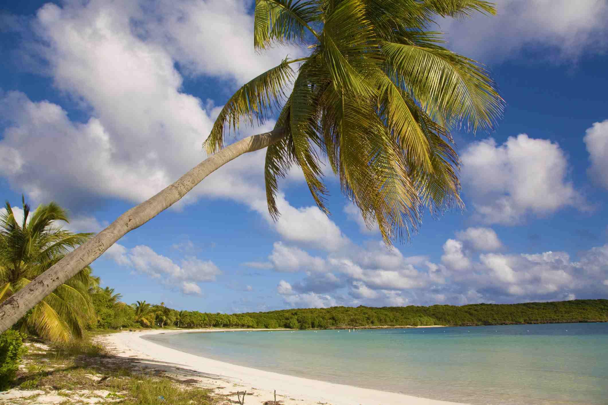 Sun Bay en Vieques, Puerto Rico