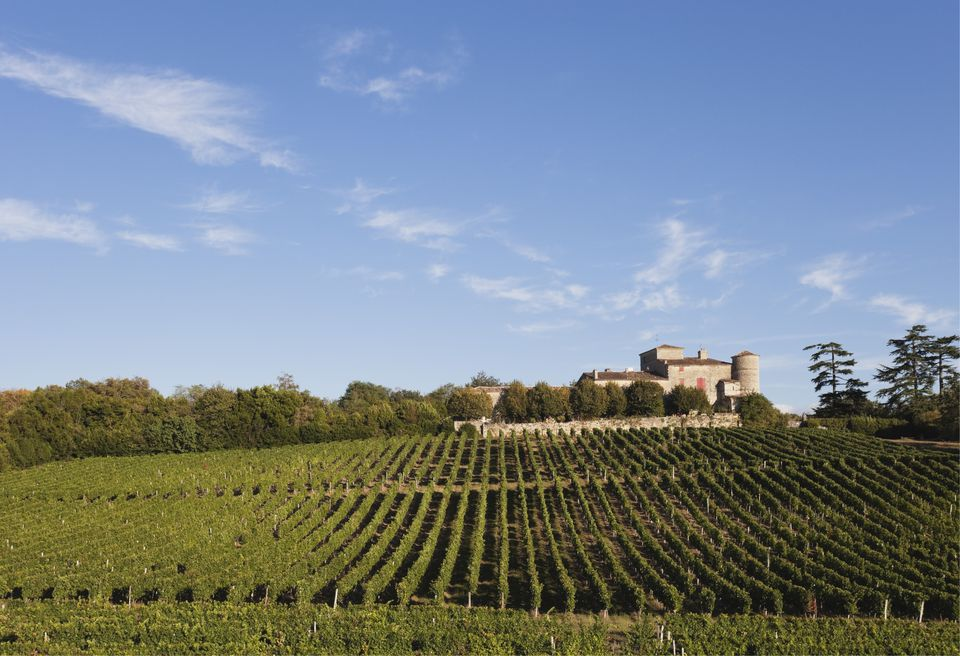 France, Bordeaux, Vineyards and Chateau Lacaussade