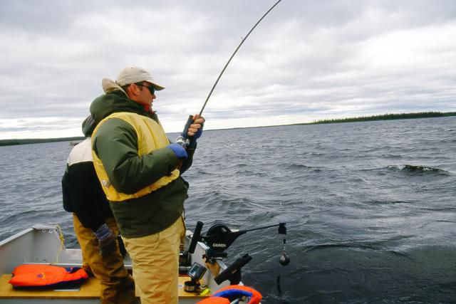 Wind is more of a problem for anglers than for fish, and it can stimulate fish activity.