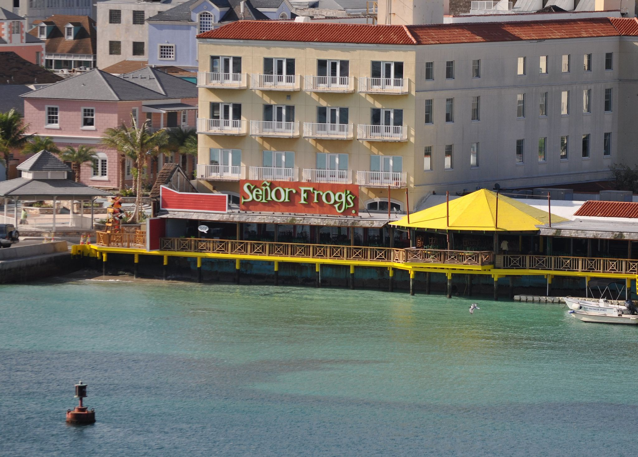 Se 241 Or Frogs Bar And Restaurant In Nassau Bahamas