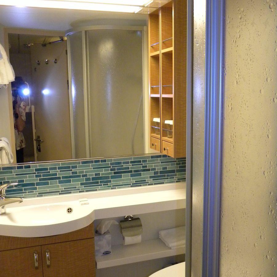 Family Interior Cabin bathroom