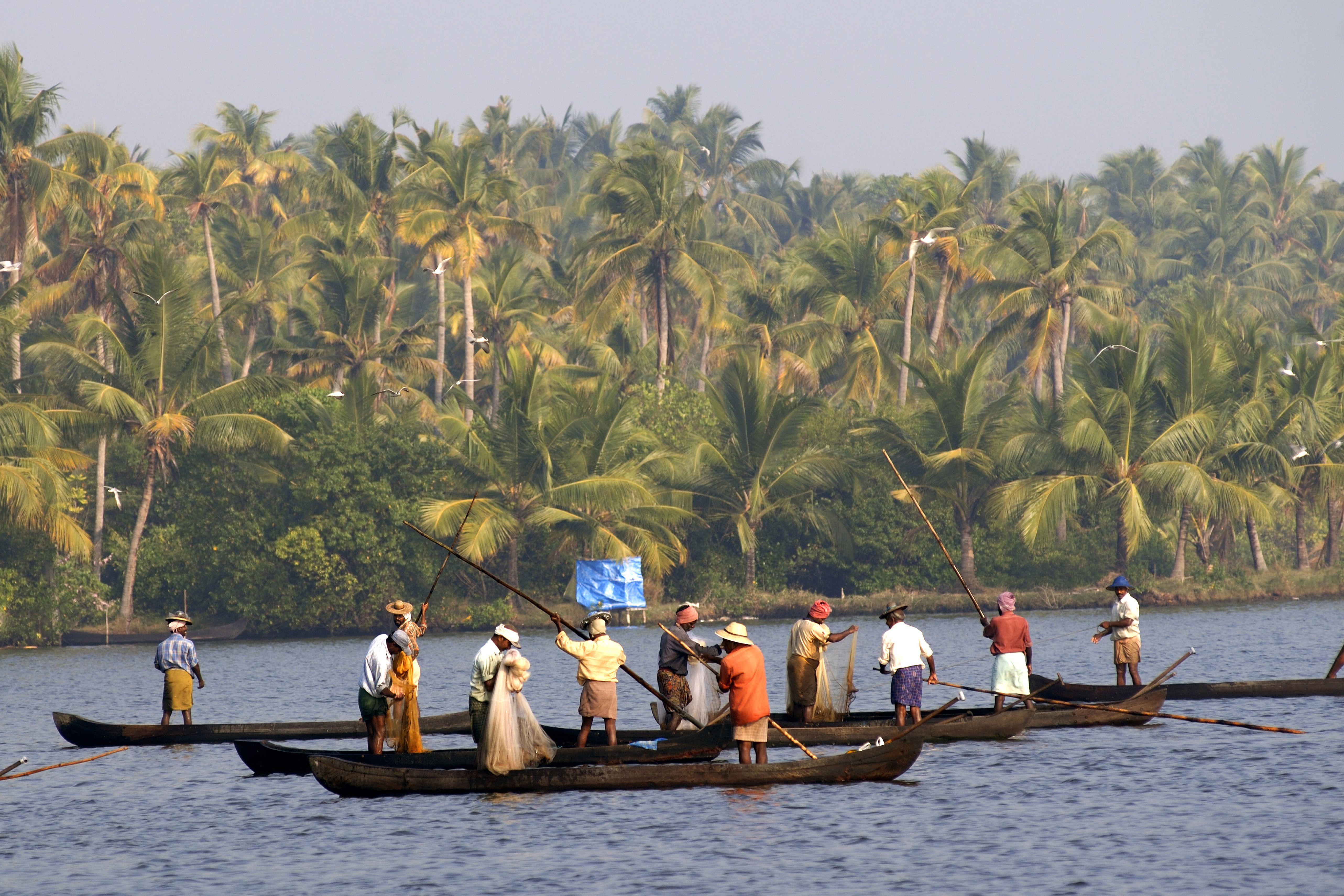 Fishermen fishing in Cherai Beach, India