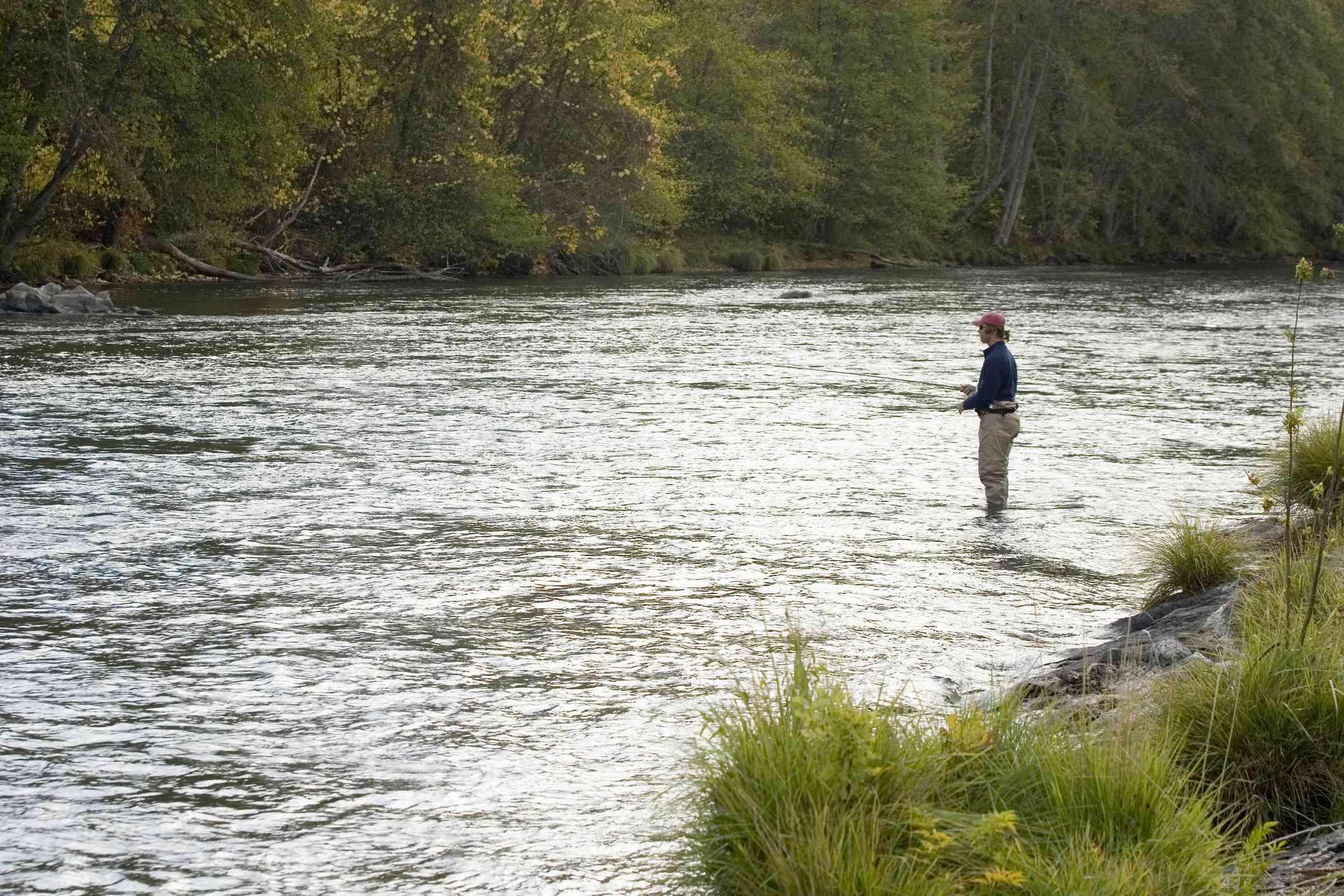 Fly fishing for steelhead trout.