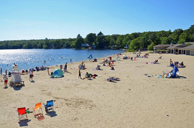 желтая оленьи фото порт перри пляжи на озере стоит понять