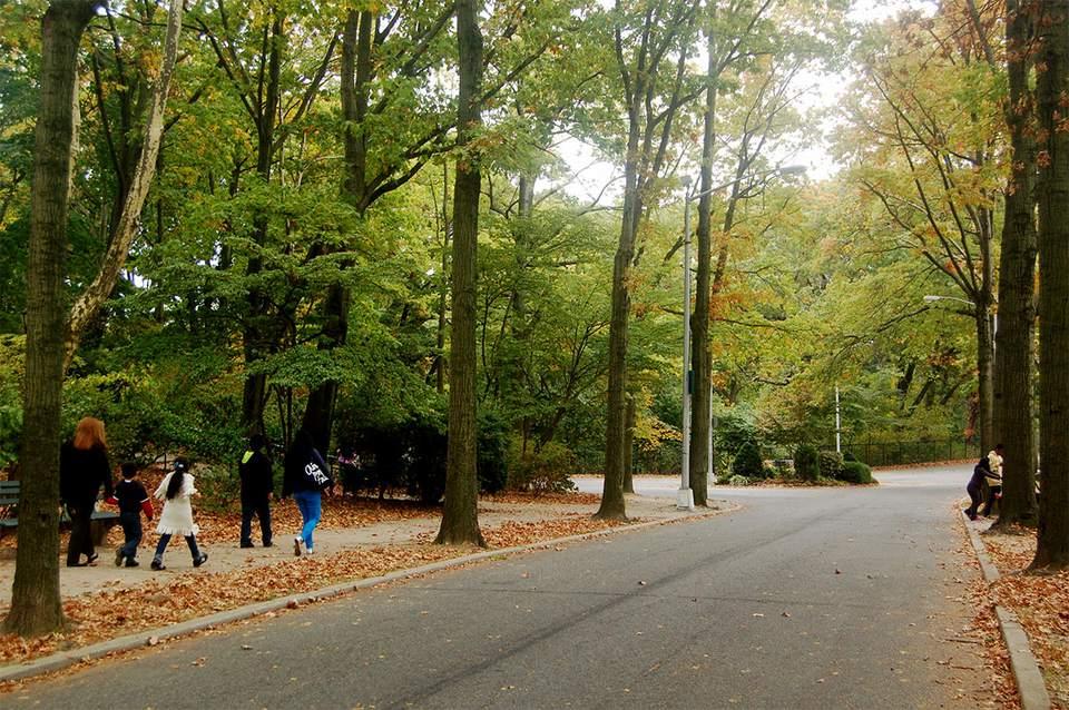 People walk along the tree-lines sidewalks in Forest Park, Queens
