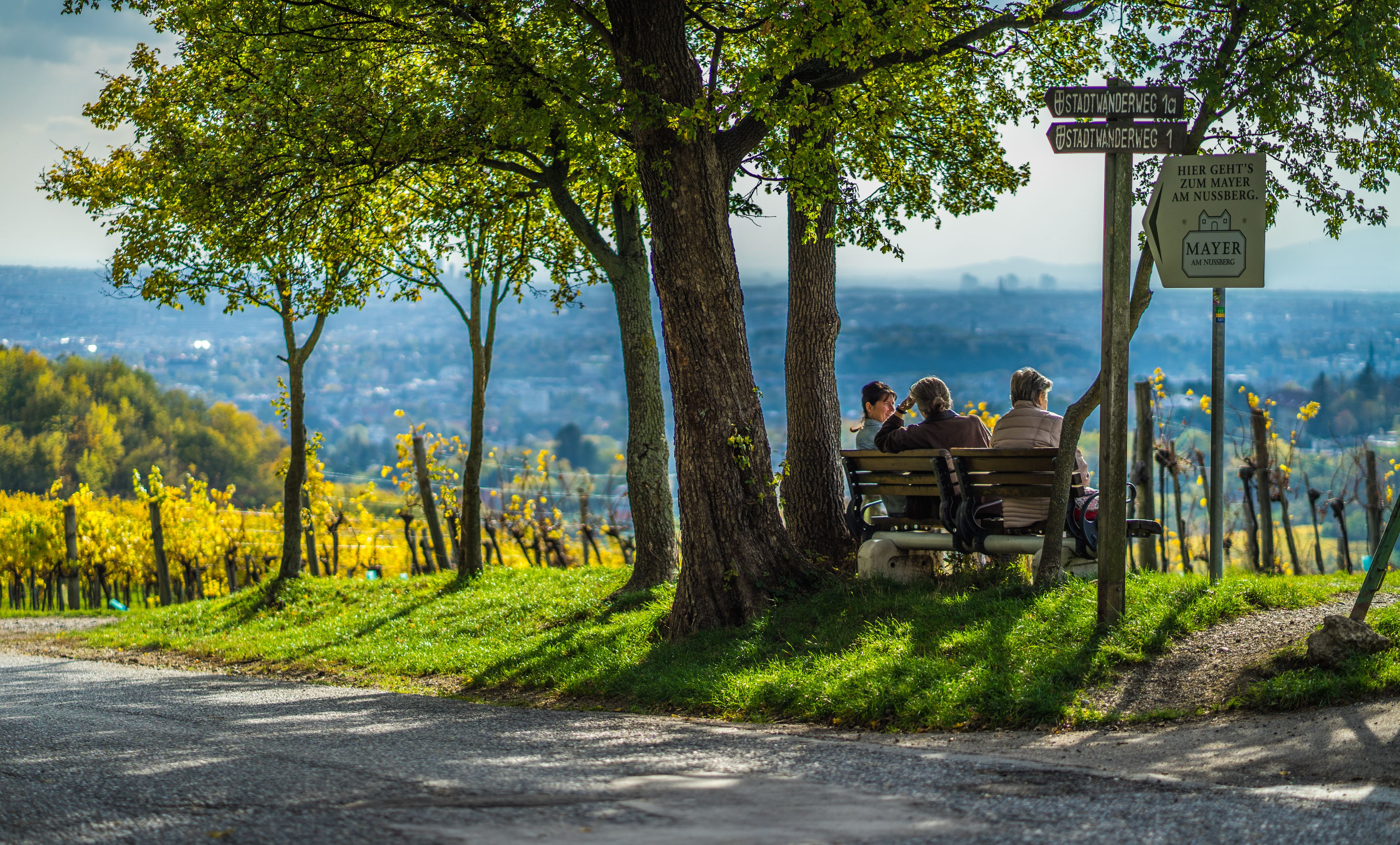 Three women in Vienna's wine country overlooking the city
