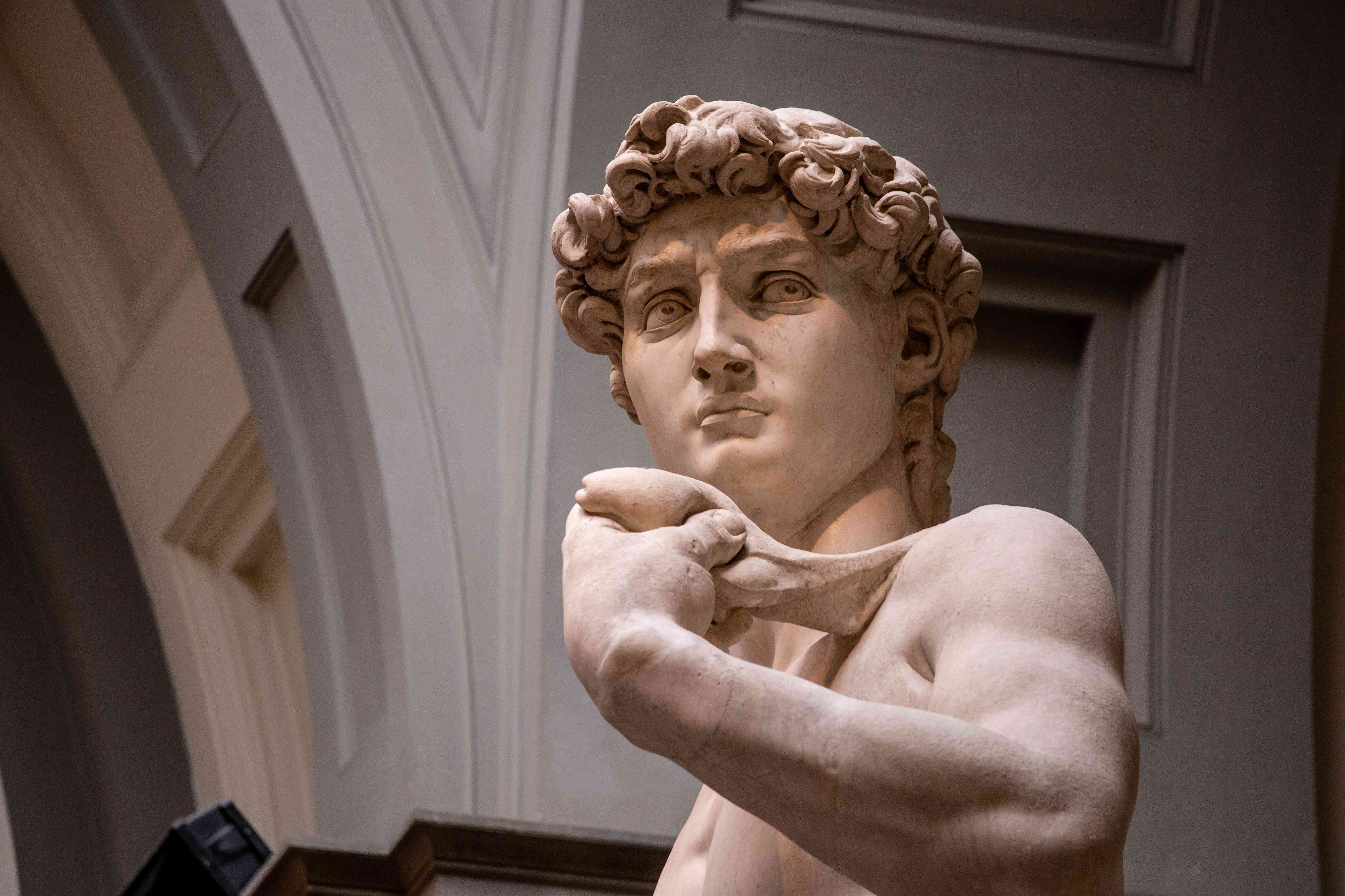 Michelangelo's David in the Galleria dell'Accademia, Florence, Italy