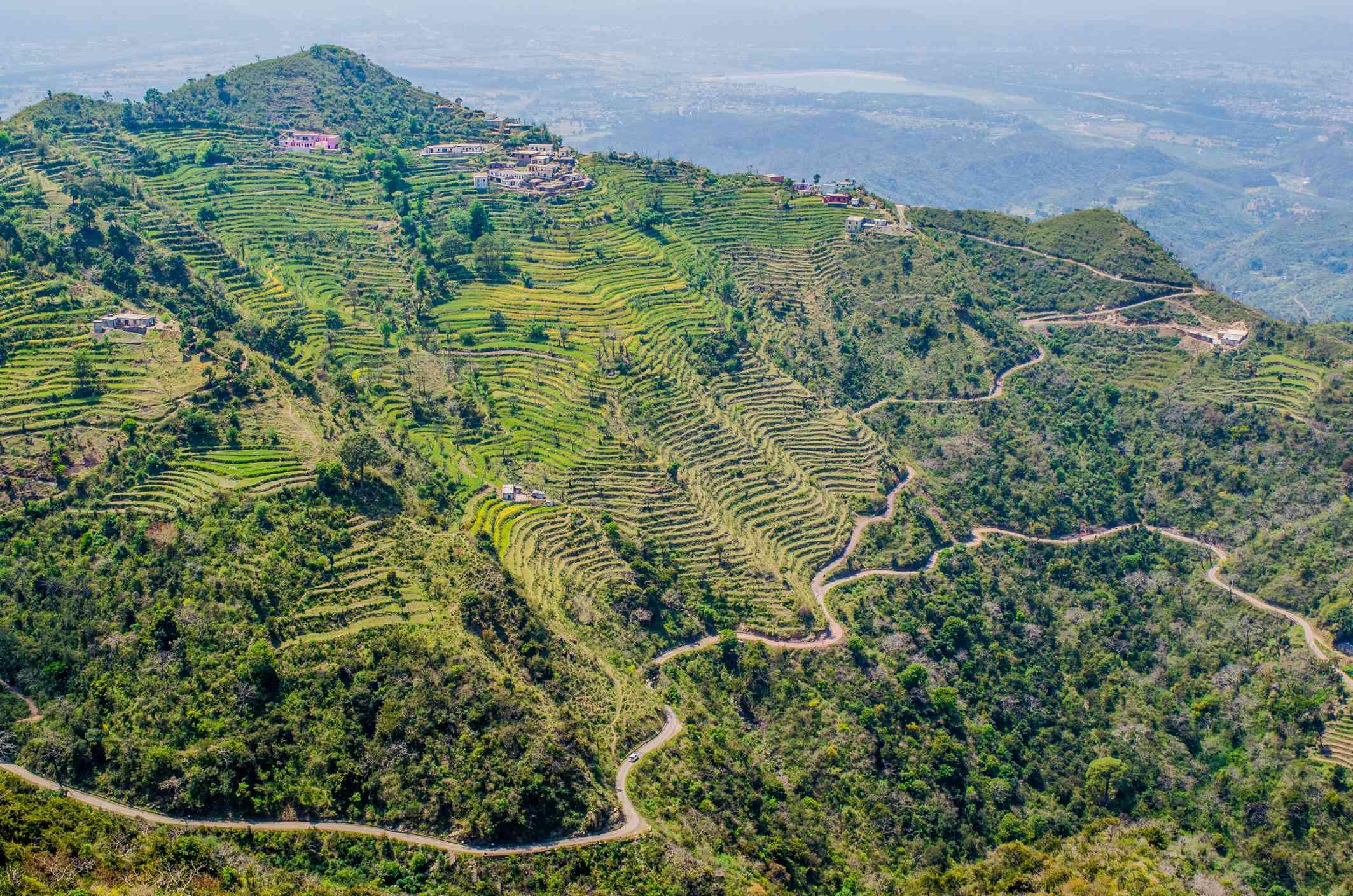 The step farming in Shivalik range