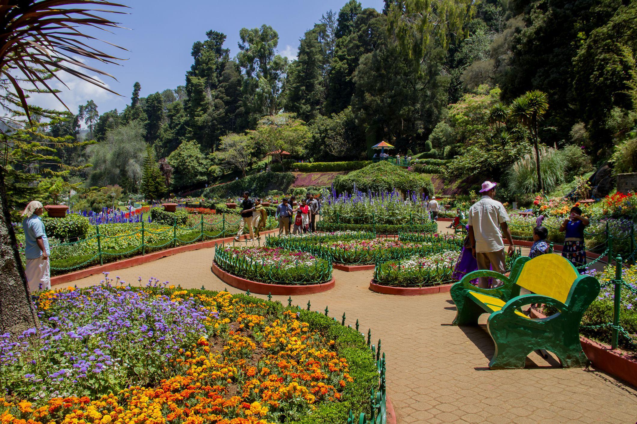 Govt. Botanical Garden, Ooty