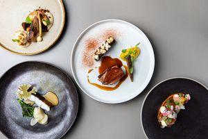Aerial shot of modern, tasteful plates of food