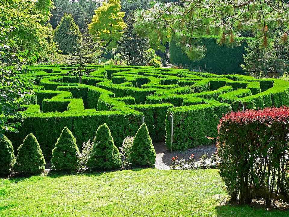 Hedge Maze at the VanDusen Botanical Garden, Vacouver