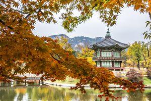 Autumn colors around Gyeongbokgung palace in South Korea.