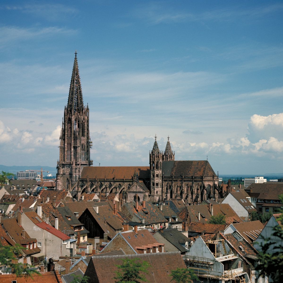 9 Things to See in Freiburg