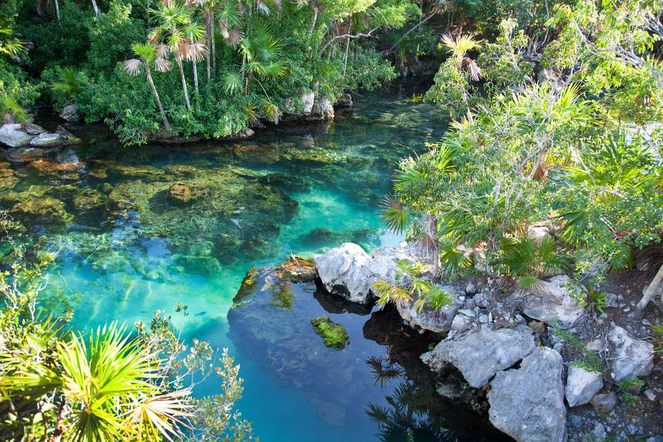 Cenote - turquoise water at Xel-Ha, Cancun