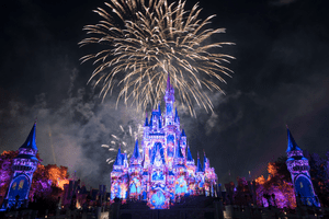 Happily Ever After Fireworks at Magic Kingdom Disney World
