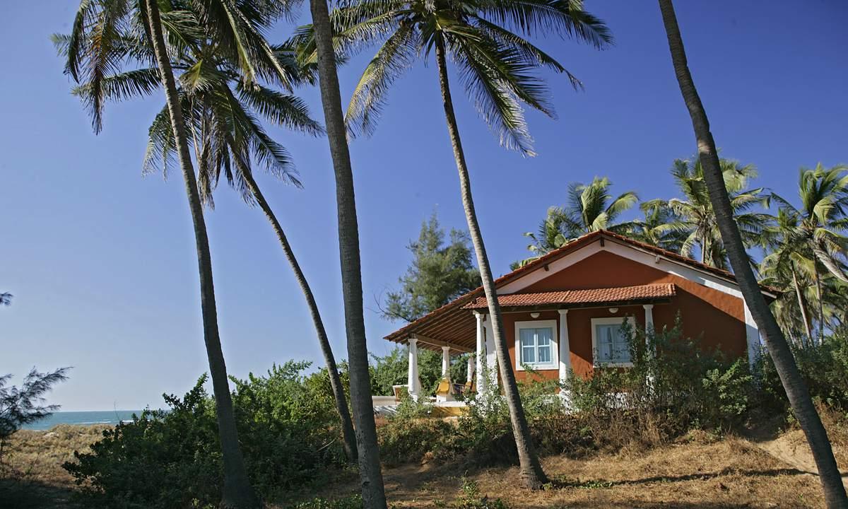 "The ""Elsewhere"" Beach Houses"