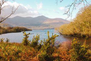 Landscape in Kilarney's national park
