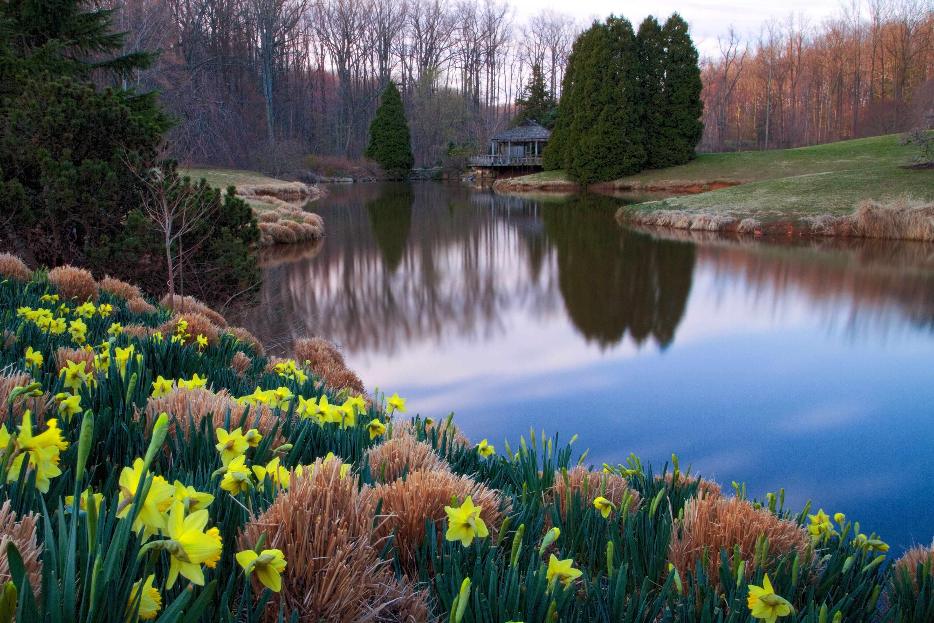 Brookside Gardens, Wheaton, Maryland