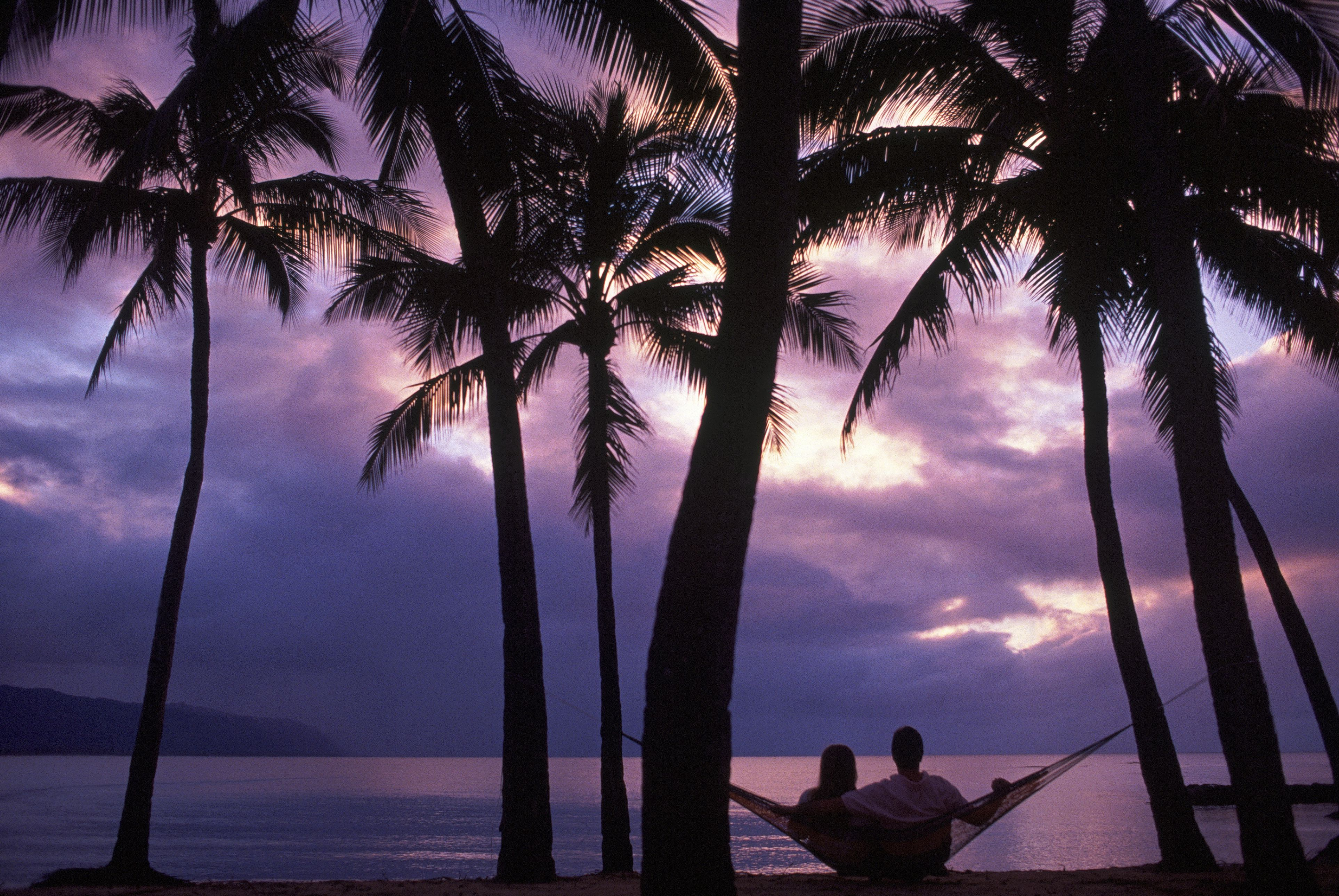 Couple sitting on a hammock surrounded by palm trees with a a purple-ish cloudy sky