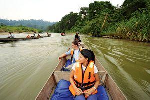 Taman Negara rapids, Malaysia