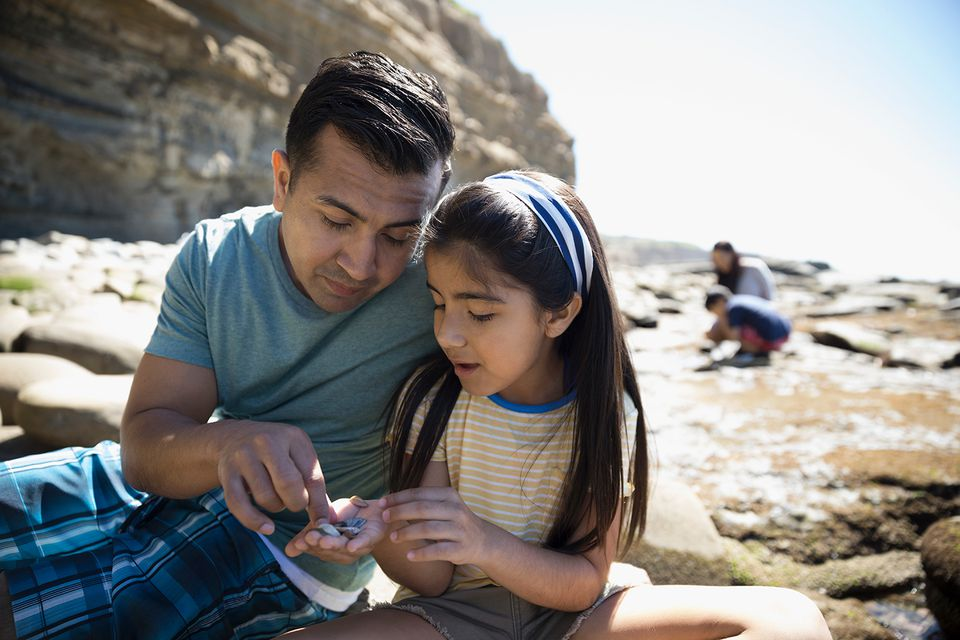 Latino father and daughter looking at rocks on sunny beach