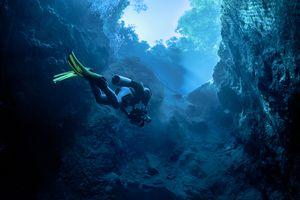 Scuba diver diving through a Brazilian cenote