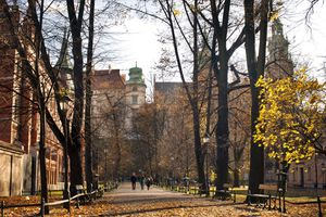 Golden Autumn in Krakow, Poland
