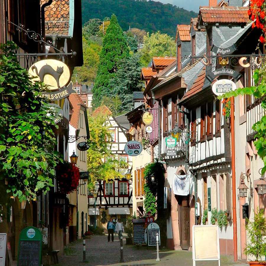 Neustadt at the German Wine Road